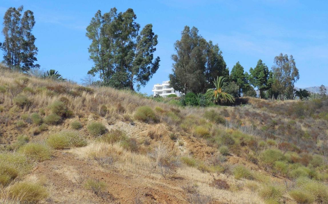 Villa - Detached, La Cala Golf Costa del Sol Málaga R3895996 7